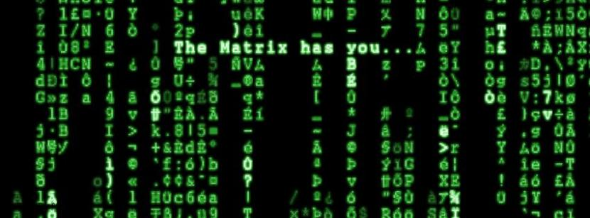 Book Review: Playing the matrix
